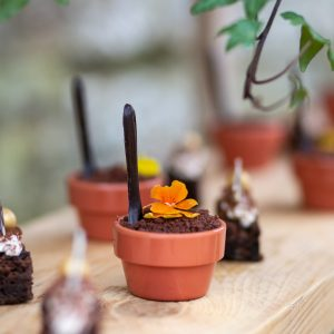 Chocolate Flower Pots John Knight Wadhurst Castle