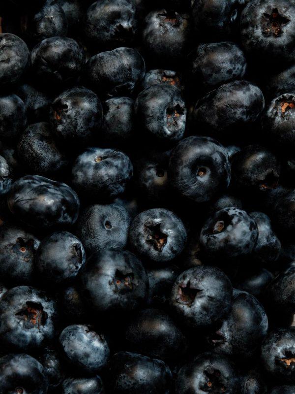 jocelyn-morales-OqHzjrlJHL0-unsplash blueberries